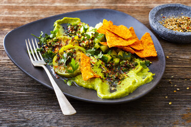 Guacamole with grilled green tomatoes, cucumber and tortilla chips - KSWF01833