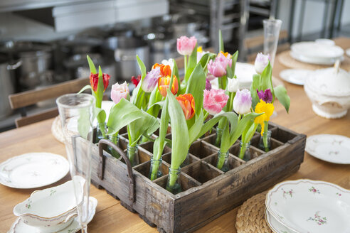 Table decoration with tulips - KVF00118