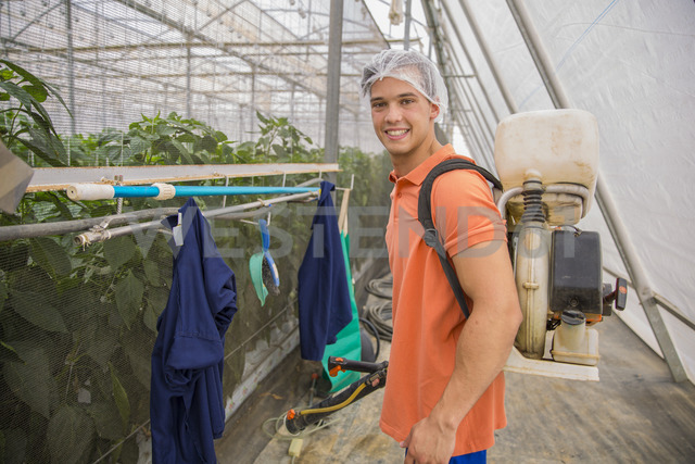 Young man working in greenhouse spraying fertilizer on plants - ZEF15212