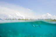 Maldives, split shot of woman snorkeling - ZEF15248
