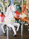 Close-up of carousel horse in amusement park - FOLF00547