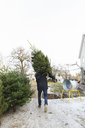 Young man working in christmas tree lot - FOLF01099
