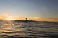 Distant view of silhouette woman surfing on sea during sunset - CAVF28820