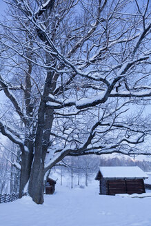 Wooden houses covered with snow - FOLF01996