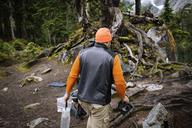 Rear view of man walking in forest - CAVF30250