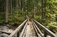 Man standing on footbridge in forest - CAVF30295