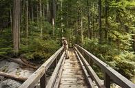 Man standing on footbridge in forest - CAVF30295
