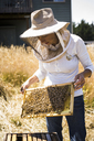 Female beekeeper examining honeycomb frame at field - CAVF30769
