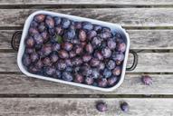 Fresh plums in casserole - GWF05472