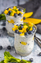 Two glasses of chia pudding with mango and blueberry - SARF03635
