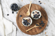 Chia pudding parfait with chocolate and yoghurt with blueberries and granola in jars - RTBF01113