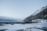 House on seashore in Bodo, Norway - FOLF04314