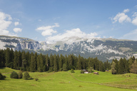 Switzerland, Grisons, Grison Alps, alpine meadows and view of Alps at Flims region - GWF05481