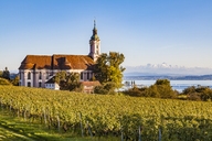 Germany, Baden-Wuerttemberg, Lake Constance, Birnau Basilica and vineyard - WDF04534