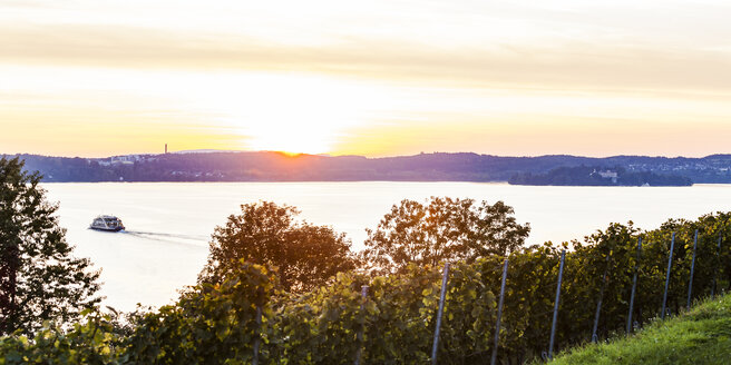 Germany, Baden-Wuerttemberg, Lake Constance, Lake Ueberlingen, Meersburg, vineyard, car ferry on the move between Meersburg and Constance, right Island Mainau at sunset - WDF04546