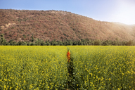 Mid distance of woman amidst rapeseed field by mountain - CAVF31447