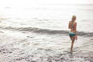Rear view of woman in bikini walking into sea during summer vacation - CAVF31471