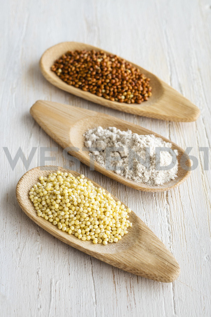 Spoons of Golden and brown millet and millet meal - EVGF03338