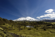 Scenic view of field by snowcapped Mount St. Helens against sky - CAVF32314