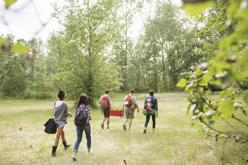 Full length of friends with backpack walking on field in forest - CAVF33383