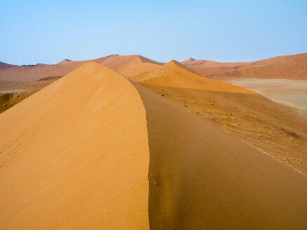 Africa, Namibia, Namib desert, Naukluft National Park, Sossusvlei, Dune 45 - RJF00769