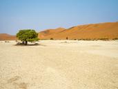 Africa, Namibia, Namib desert, Naukluft National Park, Sossusvlei - RJF00772