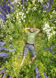 Man lying in lupine flowers in summer - FOLF06797