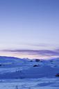 Winter landscape at dusk - FOLF07167
