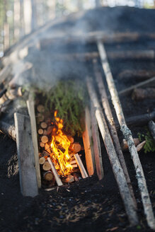 Burning fire and logs in kiln - FOLF07693