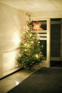 Christmas tree in corridor - FOLF08006
