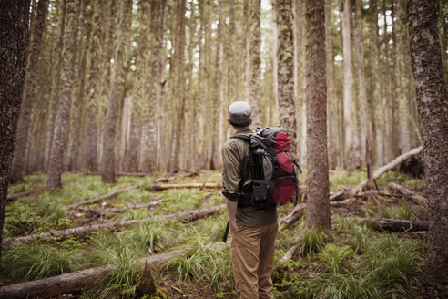 Man carrying backpack while standing in forest - CAVF33948