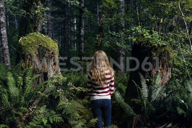 Rear view of woman standing amidst trees in forest - CAVF34098