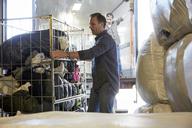 Mature volunteer unloading semi-truck at warehouse - MASF00063