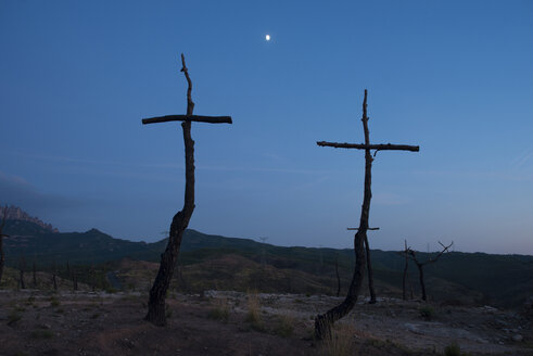 Spain, Manresa, burned forest with symbols of crosses in the morning - SKC00402