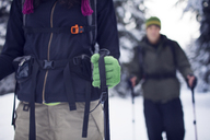 Couple hiking in forest - CAVF35286