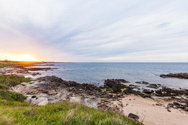 Scotland, Fife, Kingsbarns, beach at sunset - WDF04581