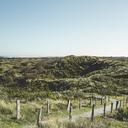 Germany, Spiekeroog, hiking trail through dunes - DWIF00911