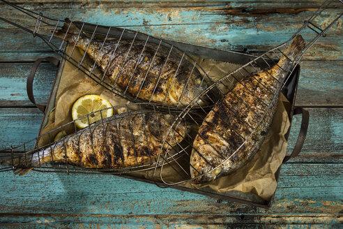 Grilled sea breams - MAEF12558