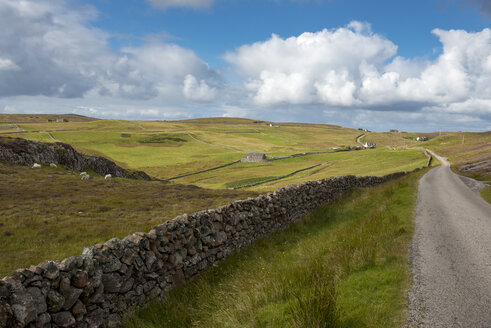 United Kingdom, Scotland, Highland, Sutherland, Assynt, Clashmore,  dry stone wall - LBF01890