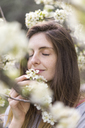 Portrait of woman smelling white blossoms of fruit tree - AFVF00421