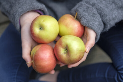 Hands holding four apples, close-up - LBF01922