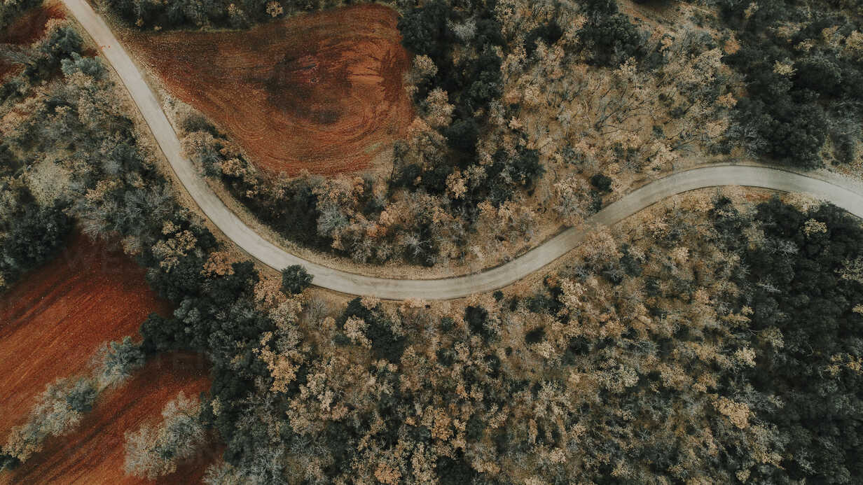 Spain, Catalonia, Lleida, Aerial view of road through forest in autumn - OCAF00175 - Oriol Castelló Arroyo/Westend61