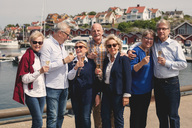 Happy senior male and female friends enjoying champagne on pier during vacation - MASF01827