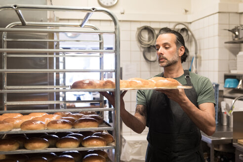 Confident mature male owner holding baking sheet with freshly baked breads on rack at bakery kitchen - MASF01866