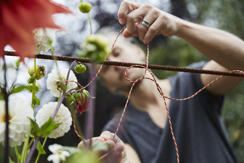 Male gardener tying string to support flowers in yard - MASF02332