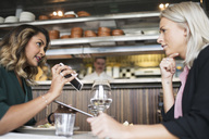 Female business colleagues discussing with mobile phone at restaurant - MASF02470