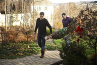 Father and son carrying Christmas tree while walking in backyard - CAVF36260