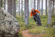Man riding mountain bike amidst trees in forest - MASF03019