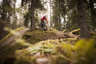 Male cyclist riding mountain bike in forest - MASF03094