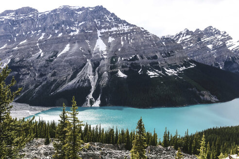 High angle view of Peyto Lake against mountains at Banff National Park - CAVF36506